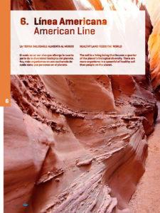Infrico American Line-1